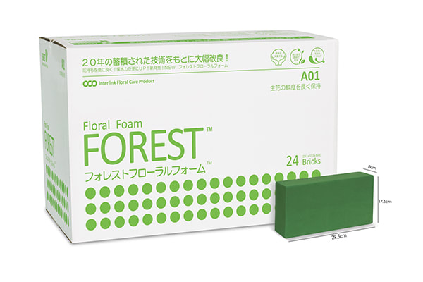 Forest A01