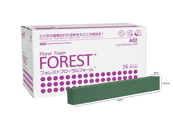 Forest A02