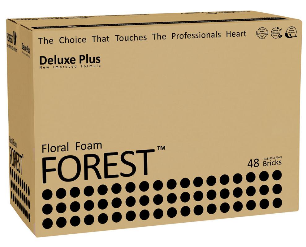 forest-big-black