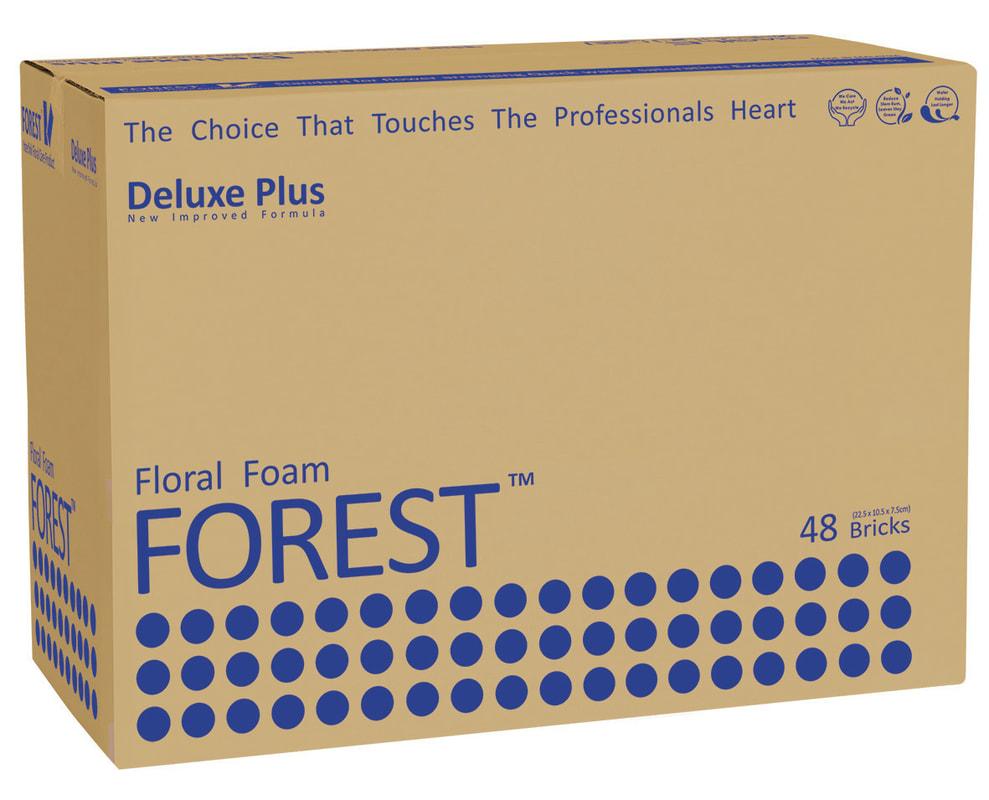 forest-big-blue