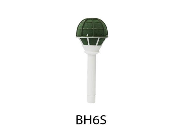 BH6S-01