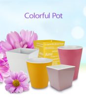 colofrul pot
